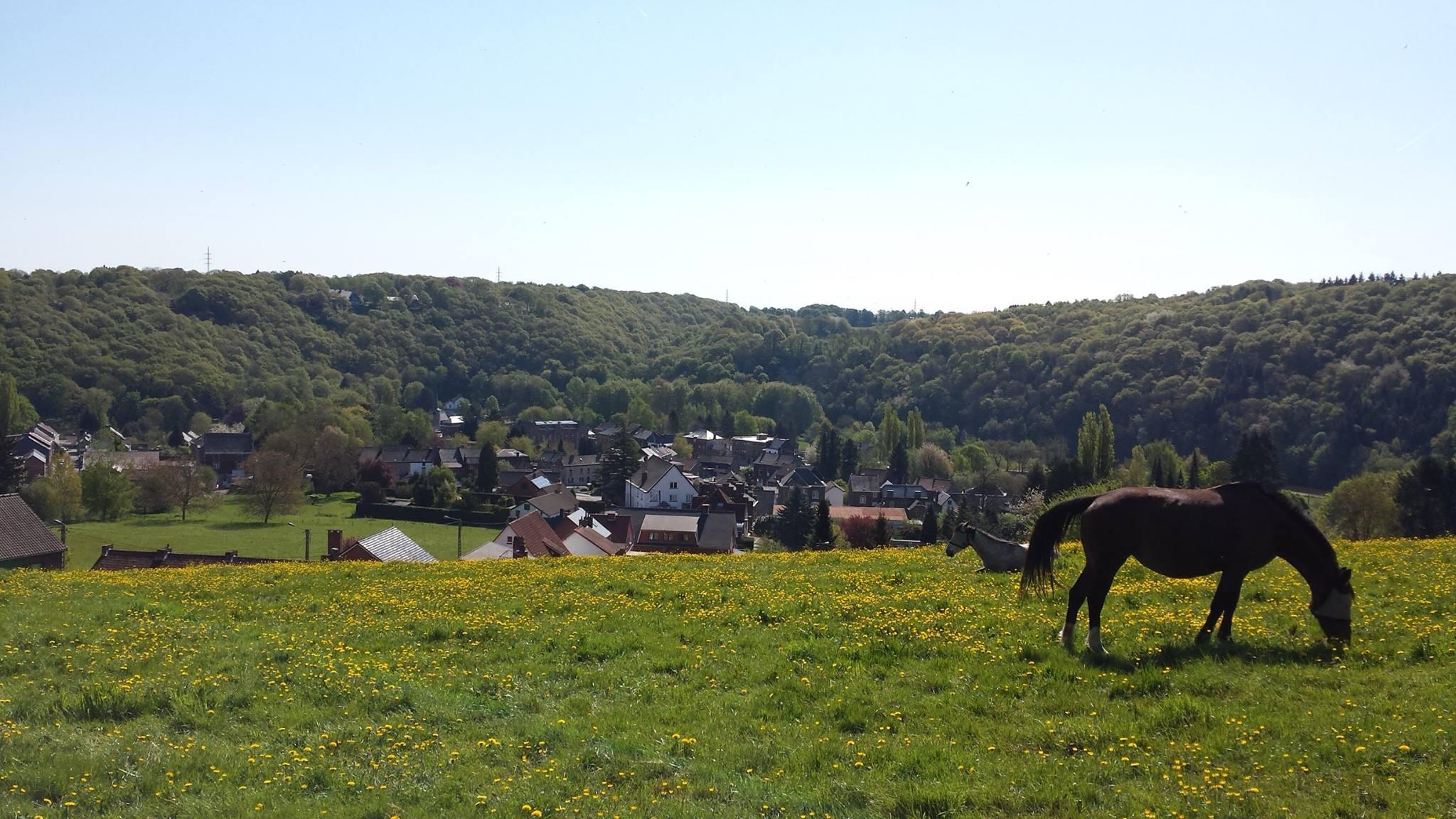 [Local] Sur les hauteurs de Landelies… Une photo qui raconte une histoire!